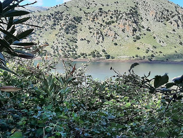 Het meer van Kournas - Crete Joy Georgioupolis